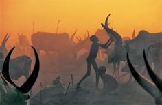 These photos are so amazing, can't stop looking// Extraordinary Photos: The Essence Of The Dinka Tribe In Sudan | Bored Panda