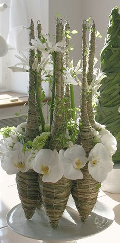 Phalaenopsis orchid blooms in modern arrangement