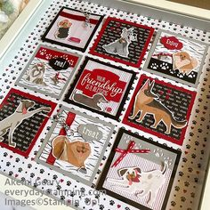 Hand Stamped Cards, Happy Trails, Stamping Up Cards, Animal Cards, 3d Projects, Shadow Box, Note Cards, Stampin Up, Have Fun