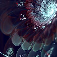 Incredibly Beautiful Fractal Flowers - My Modern Metropolis