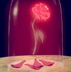 Create the floating rose from Beauty and the Beast. | 21 DIY Ways To Make Your Child's Bedroom Magical