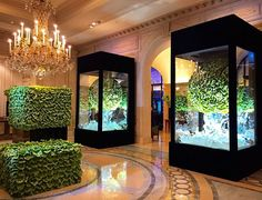 Four seasons, Paris - the Art Museum feeling in the lobby - giant Ice vases with thousands of #Anthurium in the sculptures. Paris France