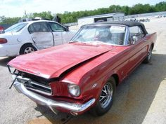 Old Mustangs For Sale 1967 Mustang, Ford Mustang Fastback, Project Cars For Sale, 1967 Shelby Gt500, Mustang For Sale, Custom Muscle Cars, Old Fords, Mustangs, Tea Length