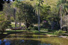 Assinado pelo grande mestre do paisagismo no ano 90, o projeto de Burle Marx foi totalmente restaurado pela paisagista mineira Laura Mourão. Fazenda Cacrinha, RJ.
