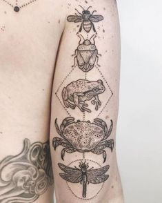 Crab Tattoo, Bug Tattoo, Frog Tattoos, Cute Tattoos, Beautiful Tattoos, Body Art Tattoos, Tatoos, Ocean Life Tattoos, Funky Tattoos