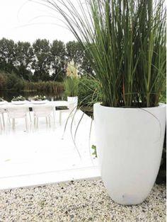 Summer Garden, Home And Garden, Backyard, Patio, Pottery Vase, Outdoor Living, Planter Pots, World, Flowers