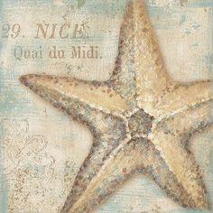 seashell prints | Seashell II by Daphne Brissonnet Bathroom Spa Sign Art Print- 10x10