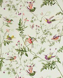 Hummingbirds - Cole & Son