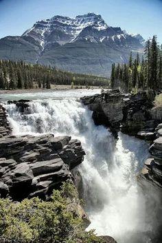 Athabaska Falls (23 m height) on Athabaska River - Jasper National Park, Alberta province, Canada