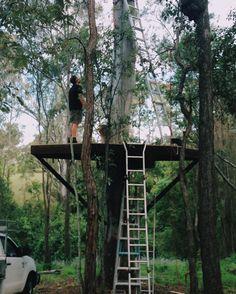 Tree Houses, Club, How To Plan, Prayer, Instagram Posts, Walls, Trees, Platform, Eid Prayer