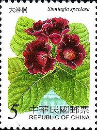 Welcome to Flora Fauna on Stamp. Through stamp we can learn Flora Fauna in the world Perennial Flowering Plants, Herbaceous Perennials, Postage Stamp Design, Postage Stamps, Flower Colouring In, Flamingo Flower, Saintpaulia, Small Art, Stamp Collecting