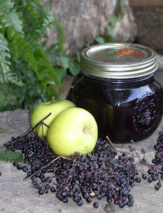 Erdőkóstoló: Bodzalekvár almával, citrommal és bodzakérdések II.