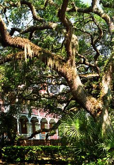 One of the earliest settlements in what would become the US. (St. Augustine FL. - old southern living)