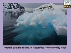 Would you like to live in Antarctica? Why or why not?