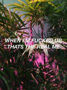 The Weeknd // The Hills