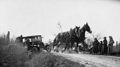 Automobile being pulled out of a ditch by a team of horses, Erindale Avenue, Toronto, Ontario / Automobile sortie d'un fossé par un attelage de chevaux, avenue Erindale, Toronto (Ontario) | by BiblioArchives / LibraryArchives