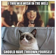 Can'T breathe i'm laughing so hard (i love the song and grumpy cat Grumpy Cat Quotes, Funny Grumpy Cat Memes, Funny Animal Jokes, Cute Funny Animals, Funny Cats, Angry Cat Memes, Animal Humor, Funny Minion, Funny Shit
