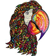 Parrot Artwork - Put on any item....the choice is yours (folio planners, ornaments, collared shirts, deck of cards, photo prints, etc.)!
