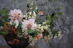 Blog - Green and Gorgeous, Seasonal British Flowers