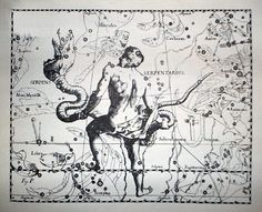 "Johannes_Hevelius_-_Prodromus_Astronomia_-_Volume_III_""Firmamentum_Sobiescianum,_sive_uranographia""_-_Tavola_P_-_Serpens_et_Serpentarius.jpg (Imagen JPEG, 573 × 464 píxeles)"