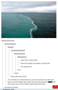 The two types of ocean lovers. There Are Two Types Of People In This World My Tumblr, Tumblr Posts, Tumblr Funny, Les Memes, Funny Memes, Hilarious, Types Of Ocean, Jhon Green, Donald Trump