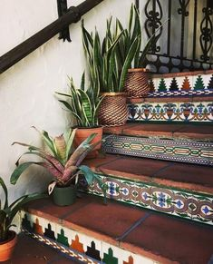 Gorgeous planters & steps