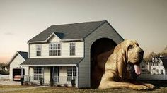 Image result for funny dog houses