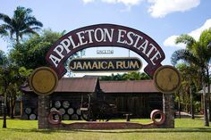 Rum from Jamaica probably the finest in the world. Ocho Rios, Jamaica. http://www.fandctravel.com/jamaica-vacation/
