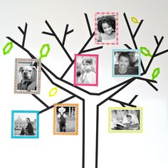 """This fun DIY idea from Scotch Brand is worth a try: """"DIY Family Tree"""" #ScotchStyle"""