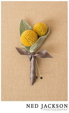 lambs ear boutonniere with yellow. Love the color combination Prom Corsage And Boutonniere, Diy Boutonniere, Yellow Boutonniere, Corsages, Wedding Cakes With Flowers, Bridal Flowers, Wedding Bouquets, Yellow Wedding, Floral Wedding
