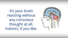 What BWRT Does Best Hypnotherapy, Your Brain, Thoughts, Youtube, Youtubers, Youtube Movies, Ideas