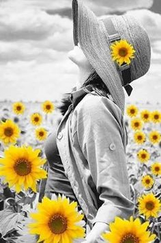 Beautiful colorful pictures and Gifs: Beautiful Flower Pictures. Sunflower Photography, Splash Photography, Black And White Photography, Happy Flowers, Pretty Flowers, Sun Flowers, Color Splash, Color Pop, Splash Art