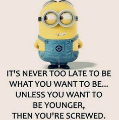 Funny Minion Quotes and Sayings                                                                                                                                                                                 More