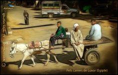 https://flic.kr/p/ASjAiS   ( 488) Luxor   Luxor (Egypt)