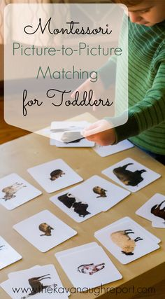 The Kavanaugh Report: Picture-to-Picture Matching for Montessori Toddlers