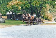 Picture - Horses and wagon at the Quiet Valley Living Farm in Stroudsburg, PA. | PlanetWare