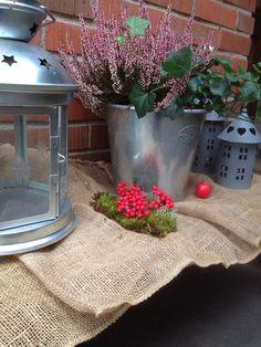 Höst Autumn, Plants, Fall, Flora, Plant, Planting