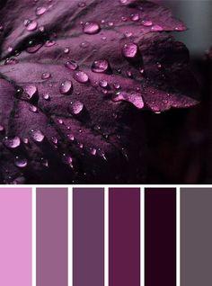 6 nuances de violet - color inspiration - Grey and shades of purple color inspiration , Grey and purple color inspiration ,purple and grey color schemes ,color palettes Purple Colour Shades, Purple Color Schemes, Purple Color Palettes, Room Color Schemes, Colour Pallette, Color Combos, Purple Grey, Purple Palette, Purple Paint Colors