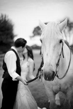 equestrian shoot