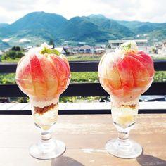 山梨と言ったら桃ですよね!桃大国に今年も桃の季節がやってきました。今回はこだわりつまったとれたての桃をおいしいスイーツにして提供している贅沢なカフェを紹介します。山梨に行く予定がある方もこれから予定を立てる方も必見の桃カフェです。