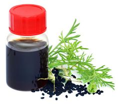 The Blessed Seed - Nigella Sativa: Black Seed Oil Benefits for Maximum Health and Vitality Nigella Sativa Oil, Black Hair Growth, Radiation Therapy, Black Seed, Oil Benefits, Hemp Oil, The Cure, Seeds, Blessed