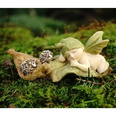 Top Collection Miniature Fairy Garden and Terrarium Statue, Sleeping Fairy Baby with Hedgehogs Teelie's Fairy Garden Garden Decor Items, Garden Crafts, Garden Ideas, Dyi Crafts, Fairy Land, Fairy Tales, Forest Fairy, What Is Cute, Fairy Garden Supplies