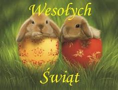 Cute bunnies in colorful Easter eggs! Cute Baby Bunnies, Cute Babies, Happy Easter Pictures Inspiration, Lily Wallpaper, Yorkshire Rose, Happy New Year Banner, Fox And Rabbit, Easter Quotes, Spring Pictures