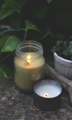 DIY : Make your own Citronella candle with eucalyptus