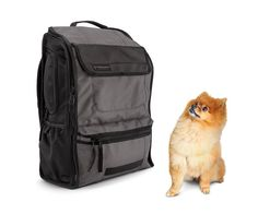 Pup backpack
