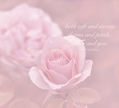 Quotes Pink, Flower Quotes, Self Love Quotes, Be Yourself Quotes, Pink Flowers, Quote Of The Day, Spring, Short, Beautiful
