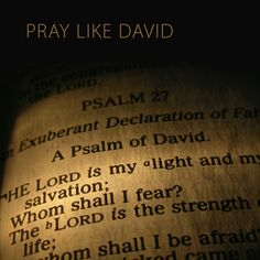 Pray like King David!