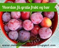 Hvordan få gratis frukt og bær