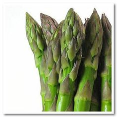 La marcia degli asparagi   Slow Food - Buono, Pulito e Giusto.
