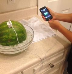 DIY iPhone Charger  1. Add salt to an ice water bowl 2. Place medium sized watermelon in bowl 3. Put charger in watermelon and in phone
